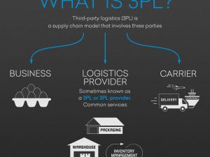 3PL means -Third-Party Logistics